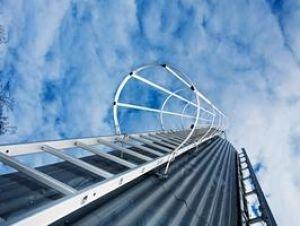 Einzgige-Steigleiter-mit-Rckenschutz-Stahl-verzinkt-520105