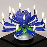 Mallofusa 4xthe Amazing Two Layers with 14 Small Candles Lotus Happy Birthday Spin Singing Music Candle (Yellow, Pink, Red and Blue)