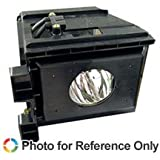 SAMSUNG HLR5067W TV Replacement Lamp with Housing