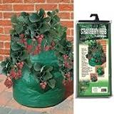 Bosmere K709 Strawberry Planter Bag