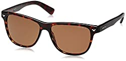 Police Polarized Wayfarer Unisex Sunglasses (S1953M56743PSG|56|Brown lens)