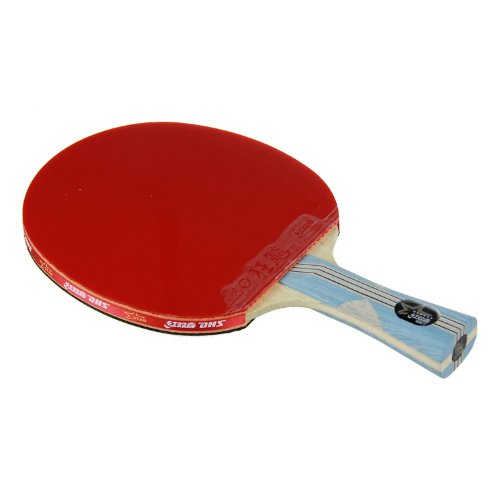 DHS X6002 (Flaired) NEW X Series Table Tennis Racket