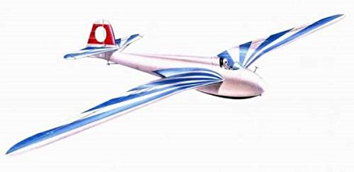 Planet Models 1:48 DFS Sailplane Habicht Resin Kit #PLT133* (Sailplane Model compare prices)