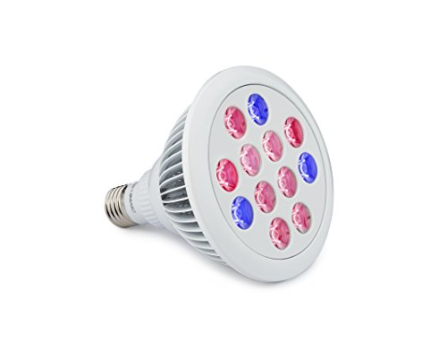 led-grow-light-bulb-perfect-grow-lights-for-indoor-outdoor-plants-suitable-for-hydroponic-garden-gre
