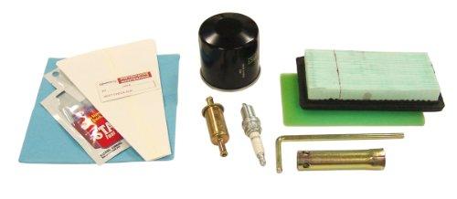 Generac 0C7106 Rv Generator Maintenance Kit For 220Cc Engines