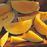 SD0541 Large Yellow Watermelon Seeds, Sweet Watermelon Seeds, New Fresh Live Seed (30 Seeds)