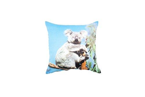 Eridaneo Cuscino Bombato ANIMALI NATURA, Colore: Koala, Misura: cm 42x42