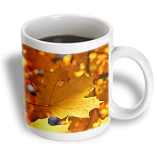 Lee Hiller Photography Garvan Woodland Gardens Autumn Leaves - Gold Leaf Autumn Leaves Maple - 15Oz Mug (Mug_97701_2)