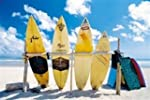 Surf Boards Scenic Beach Surfing Spor...