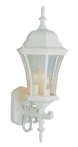 Trans Globe Lighting 4503 RT 3-Light Coach Lantern, Rust