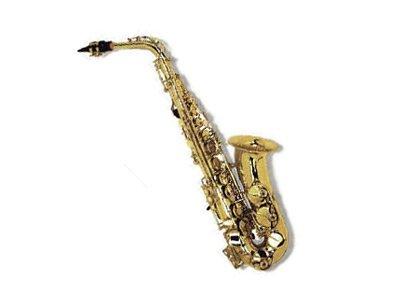 Elkhart by Selmer Eb Alto Sax Saxophone Outfit 100AS