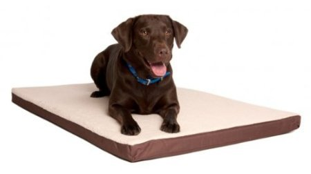 Great Paw Comfort Crate Memory Foam Dog Bed, X-Large