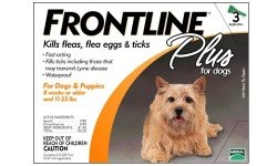 3 MONTH Frontline PLUS Orange for Dogs 0-22 lbs