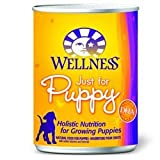 Wellness Canned Dog Food for Puppy, Just for Puppy Recipe (Pack of 24 6 Ounce Cans)