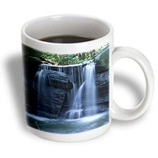 Roni Chastain Nyc - Waterfall In Central Park, 3 - 15Oz Mug (Mug_100244_2)