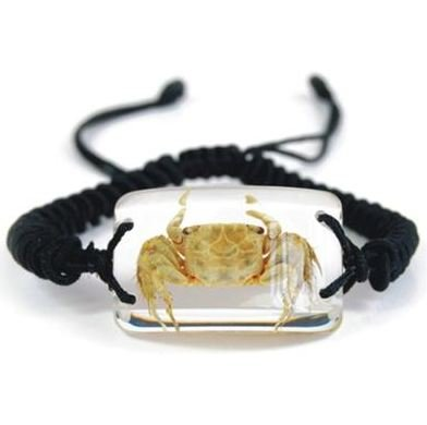 Crab Bracelet - Crab on a Glow in the Dark Background Braided Black Cord Adjusts up to 10