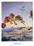 ポスター サルバドール ダリ 目覚めの直前、柘榴のまわりを一匹の蜜蜂が飛んで生じた夢