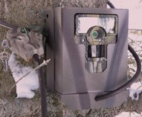 Security Box to Fit Moultrie M80 Game Camera
