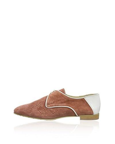 Accatino Zapatos Clásicos 850225