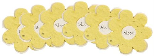 Bloomin Seed Paper Flower Shaped Gift Enclosure Card in yellow, 6 pack