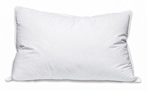 pillowtex-luxury-down-feather-queen-size-pillow-firm