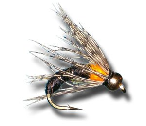BH Le Bug - Black Fly Fishing Fly
