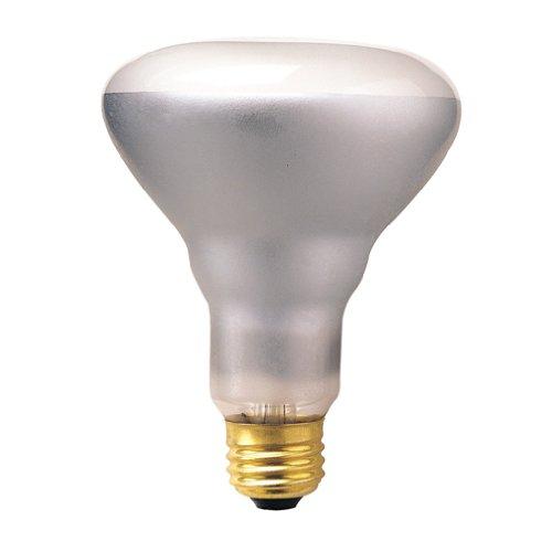 Bulbrite 65Br30Sp2 65-Watt 120-Volt Incandescent Br30 Indoor Reflector, Spot