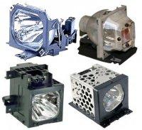GO Lamps GL435 lámpara de proyección - Lámpara para proyector (Toshiba, TDP-T40E, TDP-T30, TDP-SW25, 2000h)