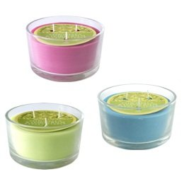 Citronella Lemon Balm - Shearer Scented Candles - Triple Wick Glass One Supplied
