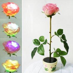 Solar Light : Solar Pink Rose Flower (In the Pot) with LED Multi-color Changing Lights, Garden Decorative Landscape Lights or Indoor Lights ( Night Light )