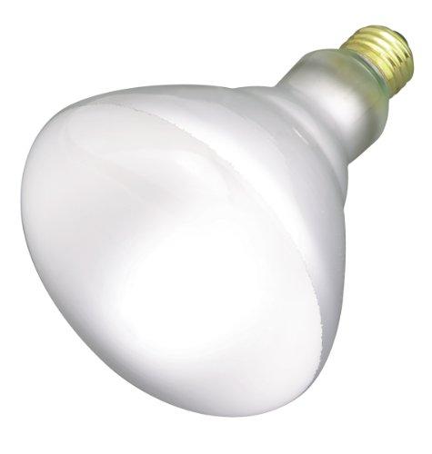 Satco Products S2853 120-Volt 65Br40 Flood Light Bulb
