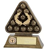 Paragon6 PoolSnooker Snooker Pool Trophy Award