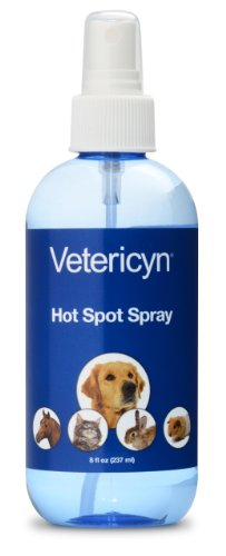 Dog Licked Area With Hot Spot Spray On It