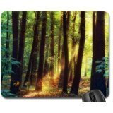 sunlight-in-forest-mouse-pad-mousepad-forests-mouse-pad