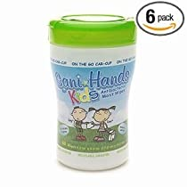Sani-Hands KIDS Instant Hand Sanitizer Wipes Cupholder, 40-Counts (Pack of 6)