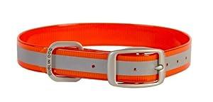 Dublin Dog 12.5-Inch to 17-Inch KOA Reflective Waterproof Dog Collar, Medium, Blaze Orange