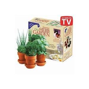 CHIA Herb Garden Gourmet Fresh Herbs 3 ea