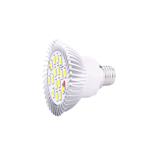 Generic 8W E14 Led Corn Light Bulb Energy Saving Lamp Warm White
