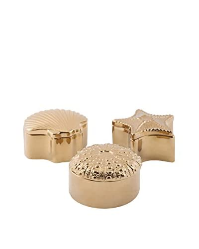Set of 3 Assorted Petra Ceramic Shell Boxes, Gold