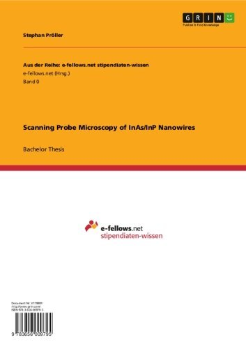 Scanning Probe Microscopy Of Inas/Inp Nanowires (Aus Der Reihe: E-Fellows.Net Stipendiaten-Wissen)