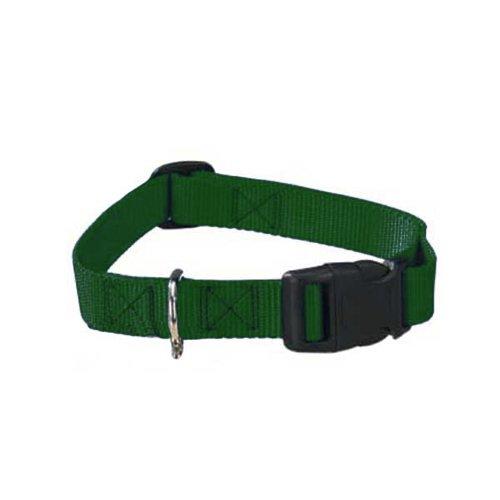 Guardian Gear Nylon Adjustable Dog Collar With Plastic Buckles, 3/4-Inch, Hunter Green