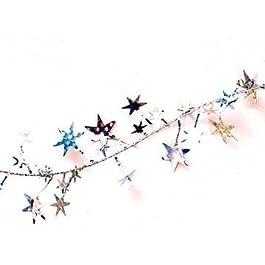 Star Garland Catena Decorativa In Plastica Argento 3,66mt