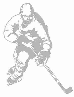 HOCKEY sport SUDDEN SHADOW WALL paper FORWARD mural