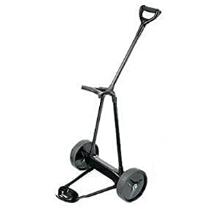 Emotion E2 22lbs 2 Wheels Pull Push Electric