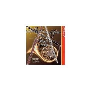 Transcriptions : Bruckner, Janacek, Mahler, Mozart, Wagner 31PTZGR40SL._SL500_AA300_