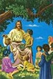 KJV Children's Rainbow Bible (Childrens 603n) (0529046423) by Thomas Nelson