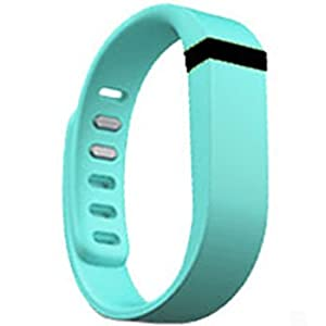 Replacement Wrist Band for Fitbit Flex (Light Blue, Small)