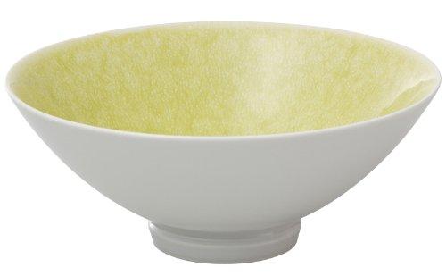 有田焼 匠の蔵 口福(こうふく)なお茶漬け碗シリーズ 碗 (大) 玉姫 T7041