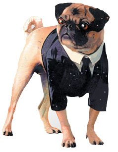 Men In Black II Dog Costume - X-Small