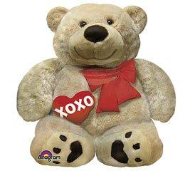 Teddy Bear XOXO Love 28